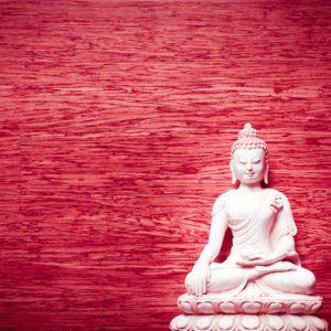 Buddha on Cherry